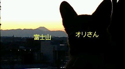 富士オリさん