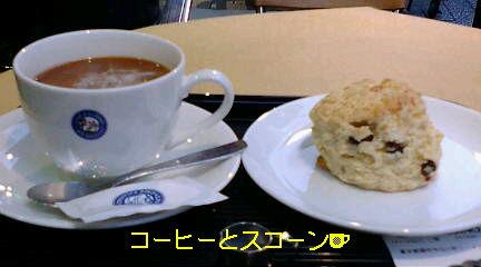 お散歩とカフェ