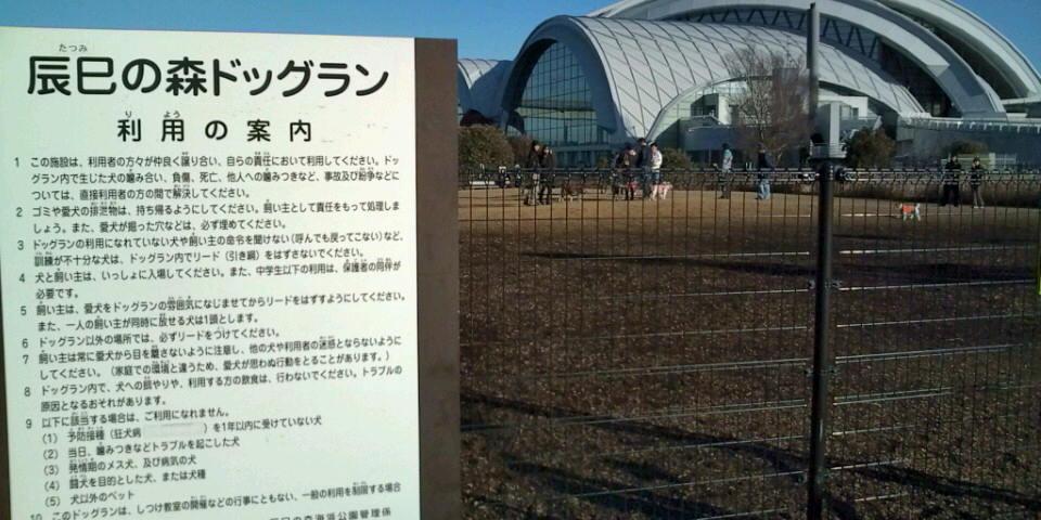 辰巳海浜公園