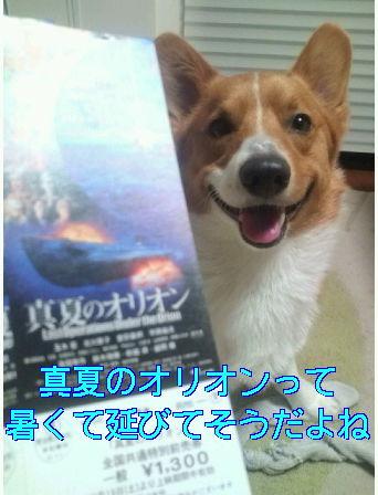 ★真夏のオリオン★