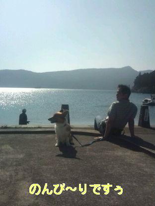 芦ノ湖キラキラ