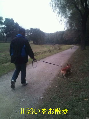 野川公園&武蔵野公園