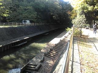 和田堀公園・善福寺緑地