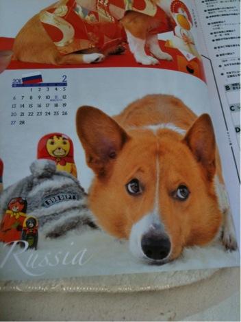 2月  ロシア