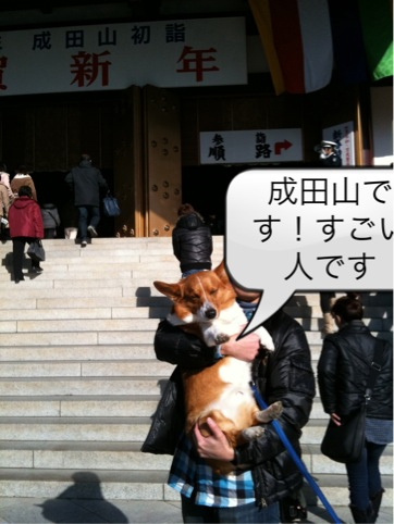 成田山詣で