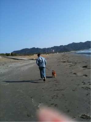 砂浜ダッシュ