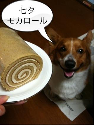 七夕モカロール