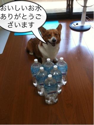 おいしいお水