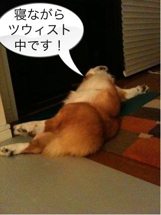 寝ながらツウィスト