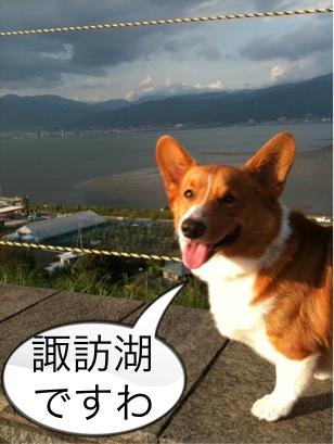 諏訪湖ですわ(笑)
