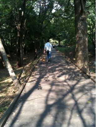 昭和記念公園続き