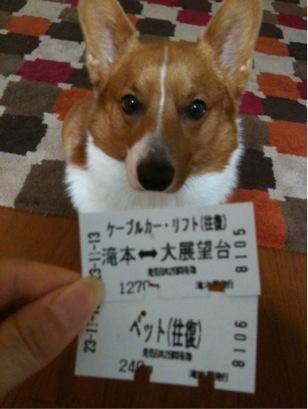 わんこ切符