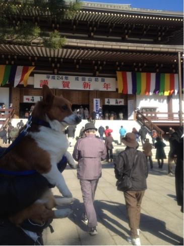 成田山詣り