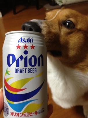 オリオンビール☆