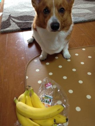 バナナんバナナん